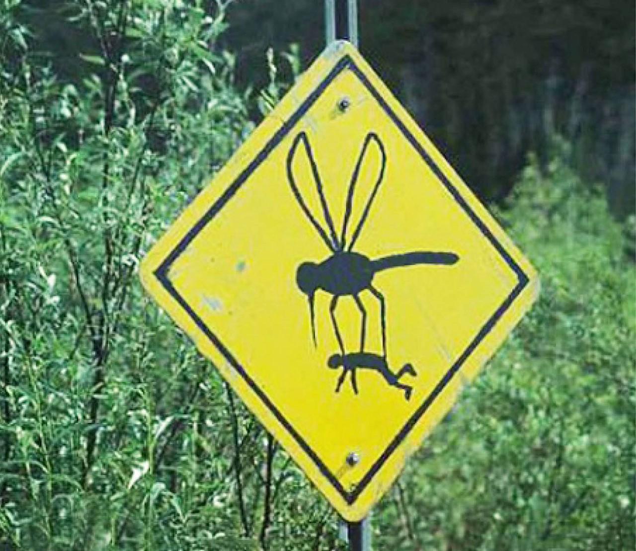 Die dekselse muggen! Zo houd je je terras muggenvrij.