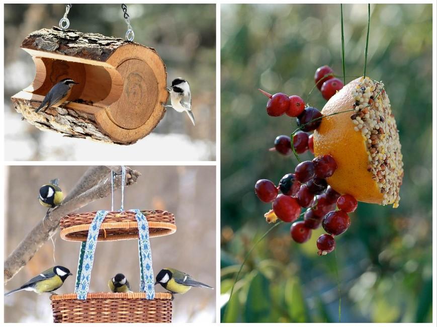 DIY: lekkere en creatieve vogelsnacks