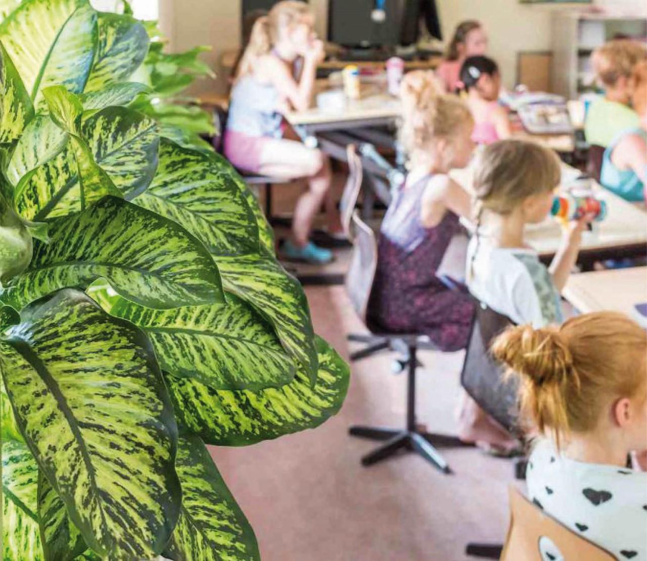 Groen in de klas, alleen maar voordelen