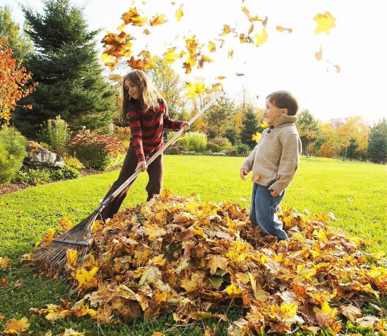 Je tuin herfstklaar in 10 stappen