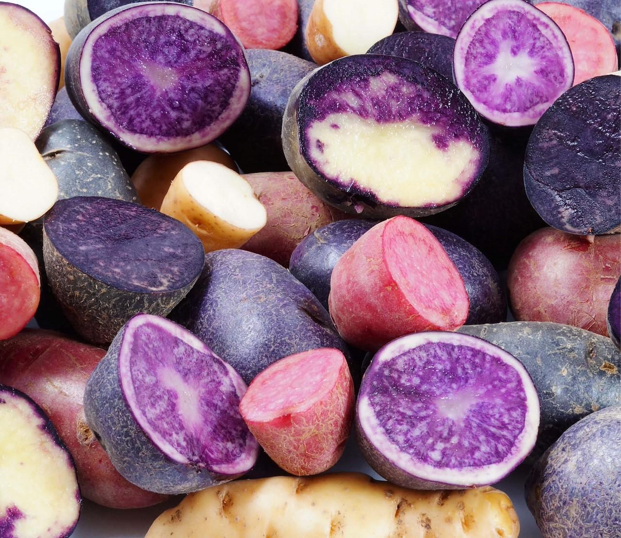 Perupas: lekker kleurrijk