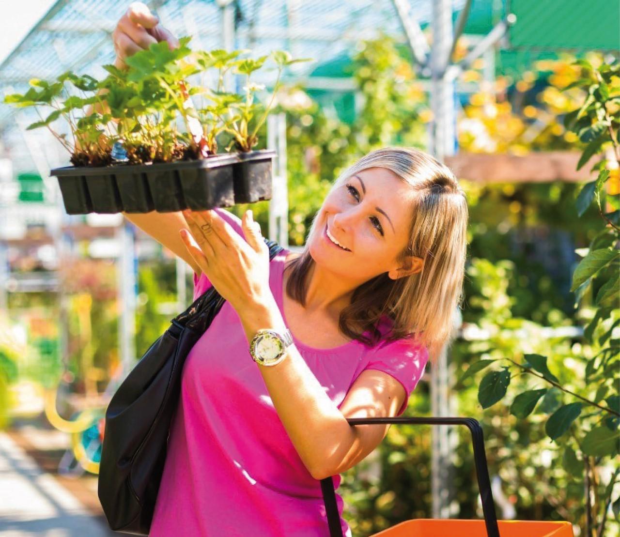 Waar moet je op letten als je een plant koopt?