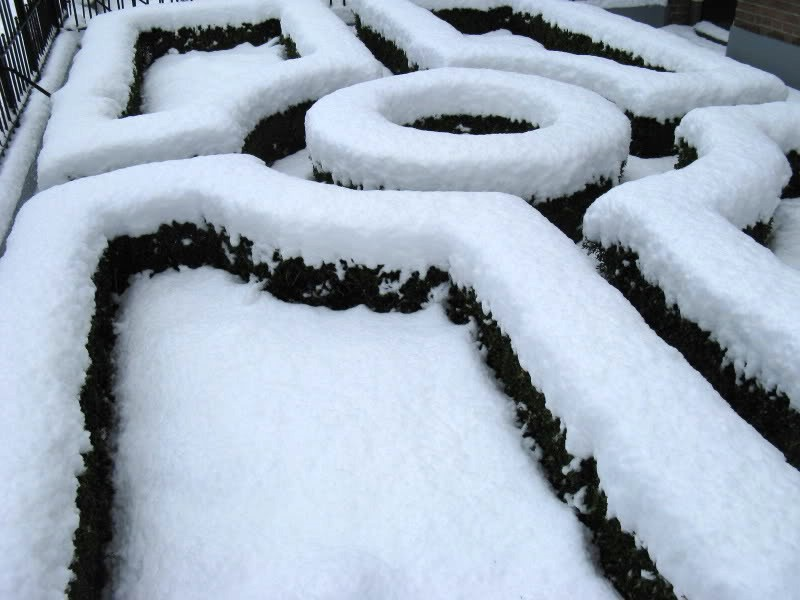 Sneeuw verwijderen van planten.