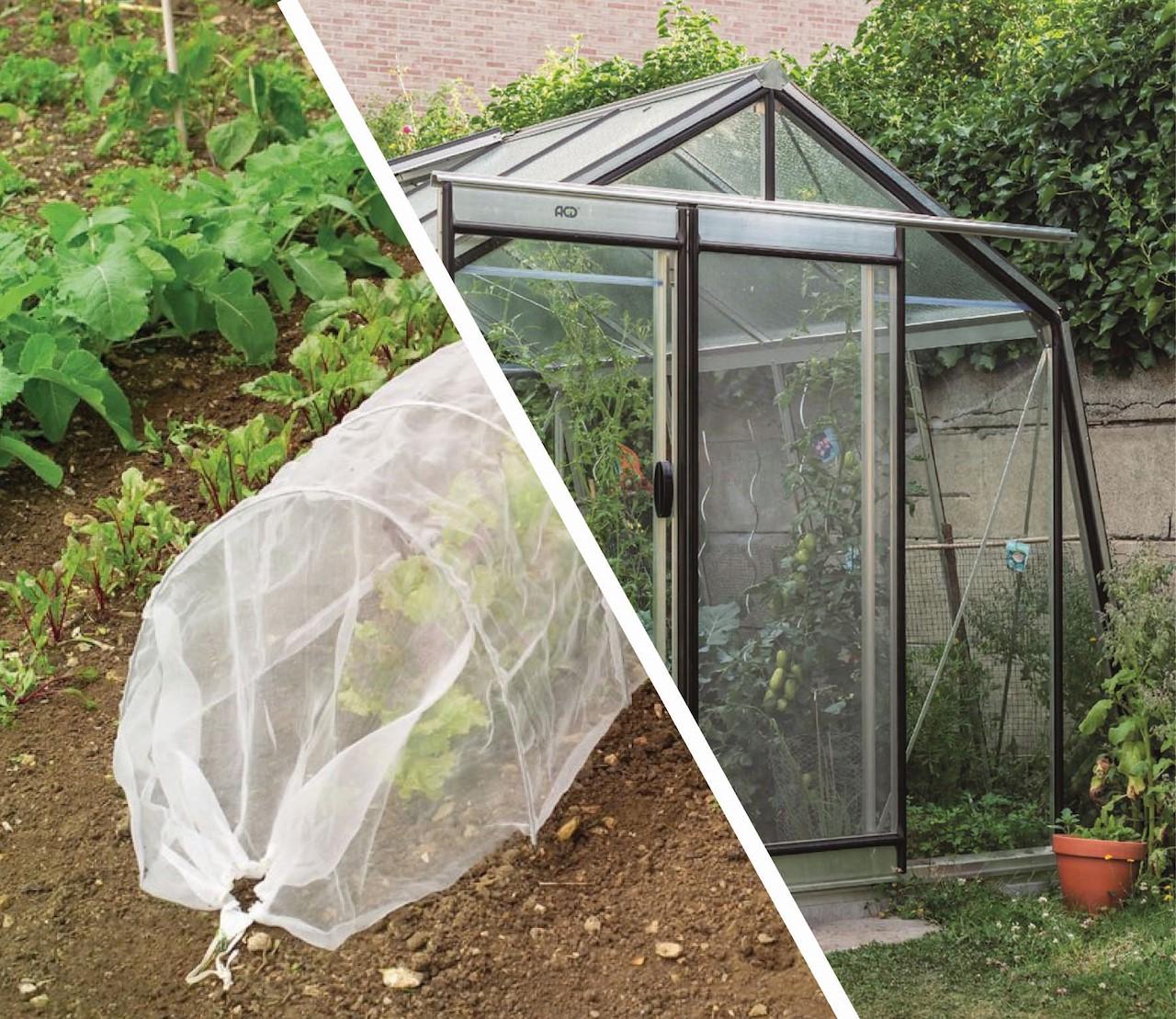 Wat kies ik best: een kweektunnel, folieserre of glazen serre?