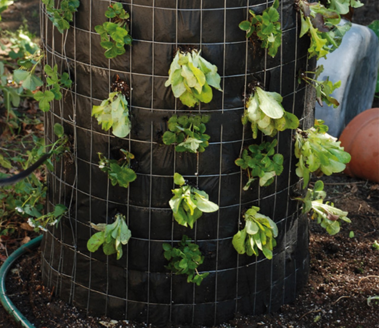 meer oogst op minder plaats: moestuinieren in de hoogte