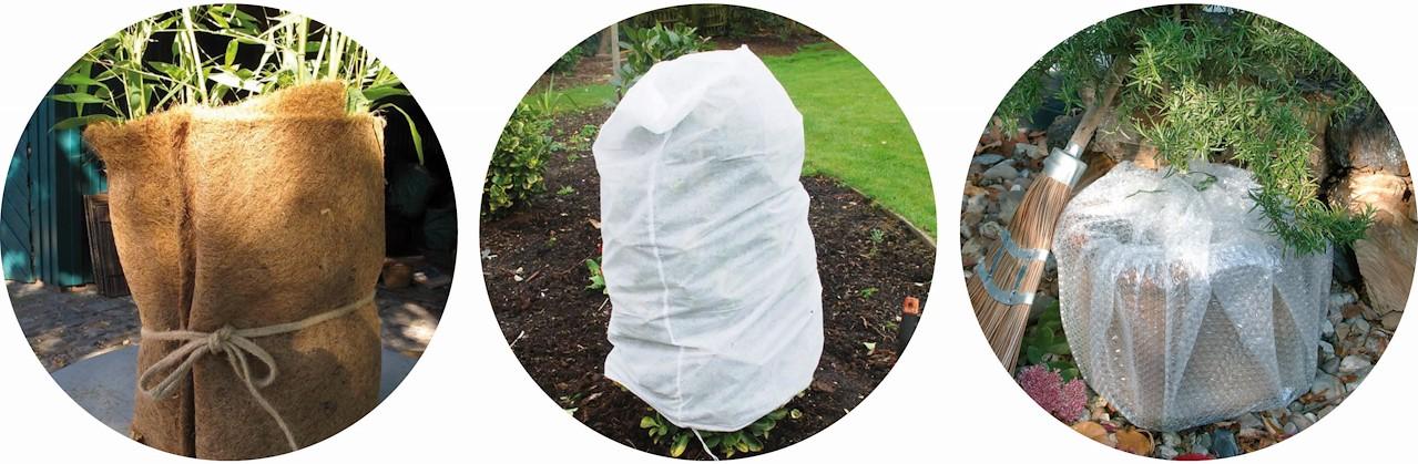 eb07395c0f23cd Gesnoeide planten, zoals rozen, zijn extra fragiel en vragen meer  bescherming. • Goede drainage is essentieel: hoe natter de bodem, hoe  sneller hij zal ...