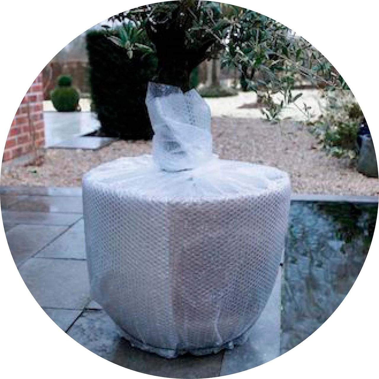 f5b7f8c4caf51b Planten beschermen tegen de kou: 7 vragen & antwoorden - Tuincentrum ...