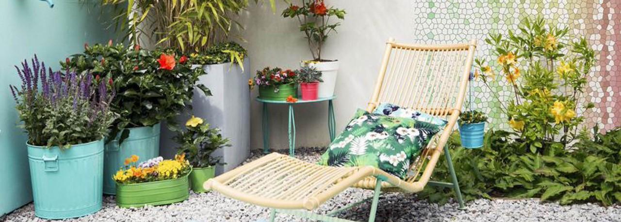 Nieuw Zo overleven je potplanten jouw vakantie - Tuincentrum Pelckmans JW-83